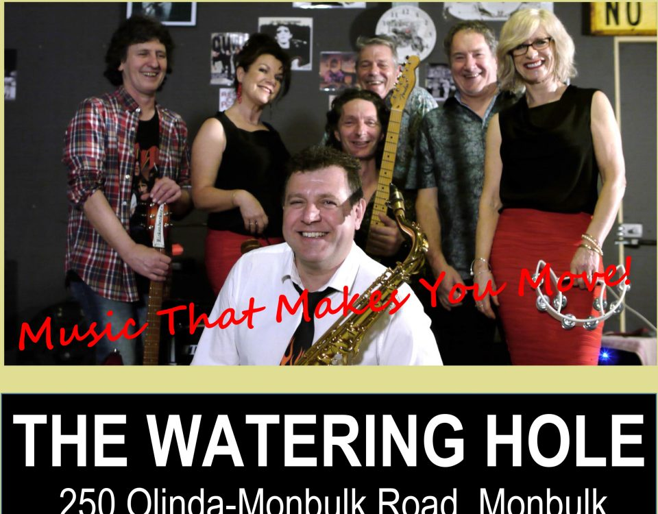 Upcoming Live Music - image No-Parking-flyer-Watering-Hole-13-10-2019-960x750 on https://www.thewateringholetavern.com.au